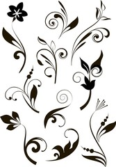 Set of decorative branches for design
