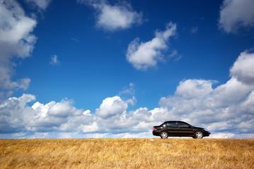 Car on meadow