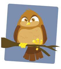 Angry Owl_stock