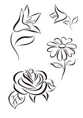 flowers  chamomile logotype