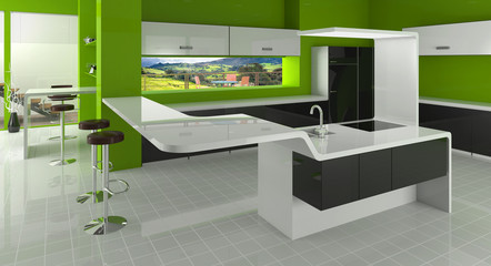 Fototapeta Modern kitchen in green, black and white colors obraz