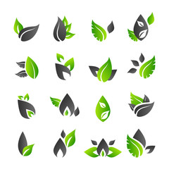 Set of 14 abstract green leaf icons - Vector illustration