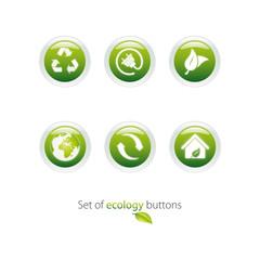 Eco green button vector set