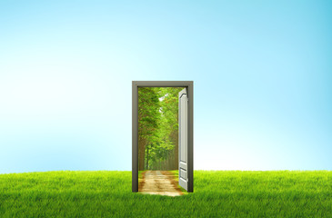 Door open on green field for environmental concept and idea