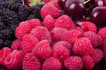 raspberries, mulberry, black currant, red currant