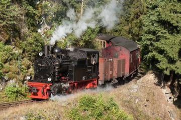 Harzer Schmalspurbahnen Dampflok im Selketal