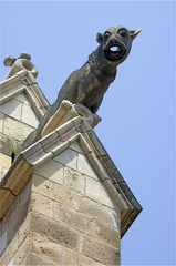 Gargoyle of the cathedral of barcelona