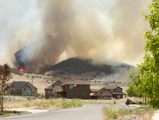 Wild fire or forrest fire endangers neighborhood