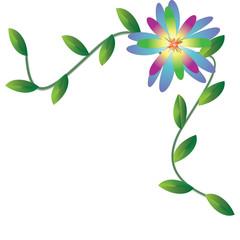 Flower on background