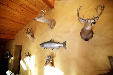 Door stickers Hunting Deer Mounts