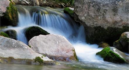 Petite cascade dans une rivière
