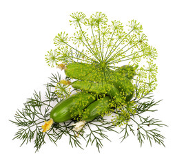 cucumber and dill isolated on white background ..