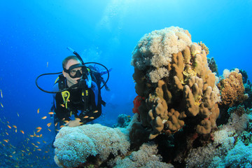 Scuba Diver, Tropical Fish and Coral Reef