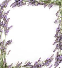 Foto auf Leinwand Lavendel Cadre de lavande en bordure