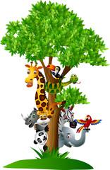 various funny cartoon safari animals to hide behind a tree