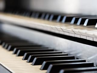 Manuale einer Orgel