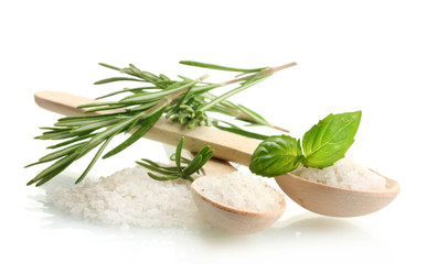 Aluminium Prints Herbs 2 salt in spoons with fresh basil and rosemary isolated on white