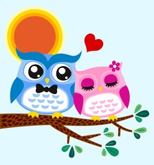 owl couple illustration