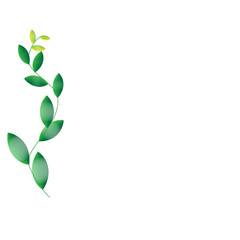 Leaf of frame on background