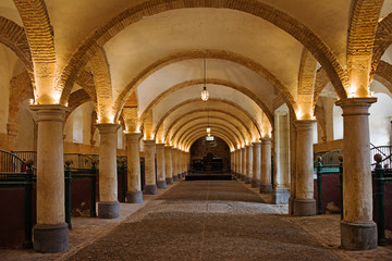 Ingelijste posters Artistiek mon. Royal Stables in Cordoba