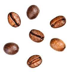 Few coffee beans. Isolated