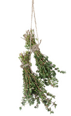 fresh green thyme hanging on rope isolated on white