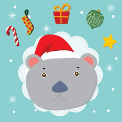 kola bear christmas celebration