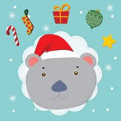 kola bear christmas celebration