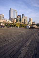 Seattle Waterfront Vertical