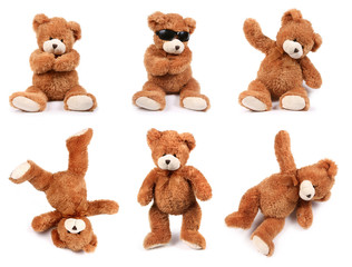 Obraz Teddy bears in different poses on white background - fototapety do salonu
