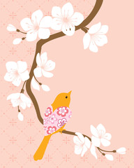 Blossom cherry branch 1