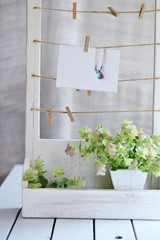 飾り箱の写真とオレガノケントビューティー