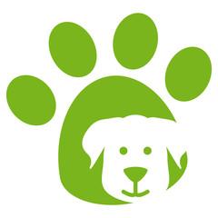 Hundepfote Hund Hundegesicht Spürnase Pfotenabdruck