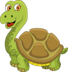 Funny Tortoise cartoon