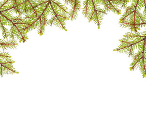 green fir branches half frame isolated on white
