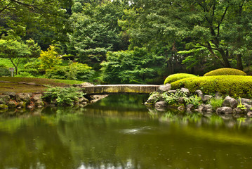 Japanese garden wood bridge