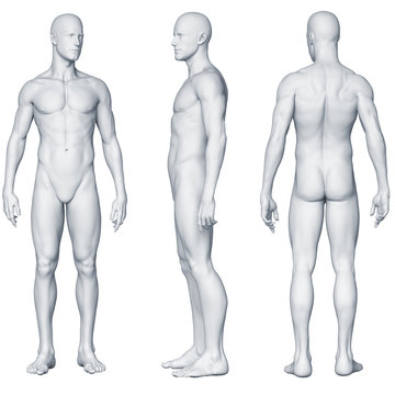 Männlicher Körper - Seitenansichten