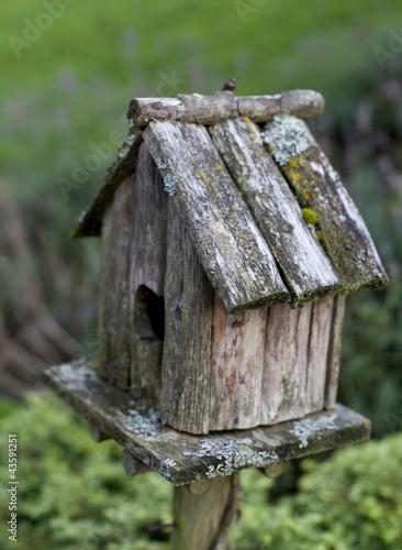 Nichoir pour oiseaux au jardin photo libre de droits sur for Oiseaux metal pour jardin