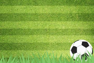 Football soccer on grass background
