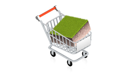 Shopping cart with ground block