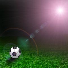 The grass on soccer field. Texture of green grass