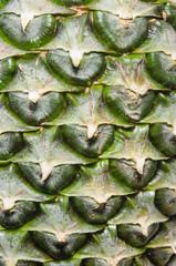 pine apple skin