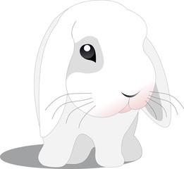 vector rabbit