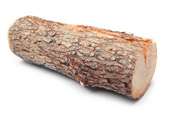 Cut log fire wood from Common Oak tree.