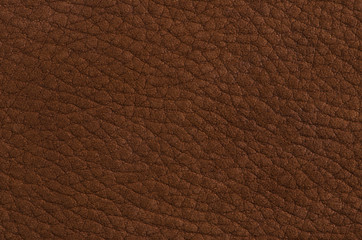 Wall Mural - Brown leather