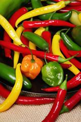 Fototapete - Chilli pepper still life