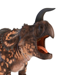 einiosaurus crying close up