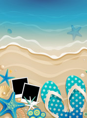 Wall Mural - Summer background with shells