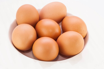 Chicken brown egg isolate background