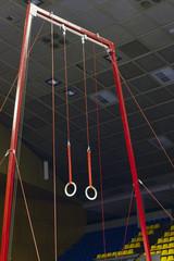 Gymnastic sport rings